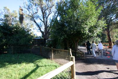 野生動物公園